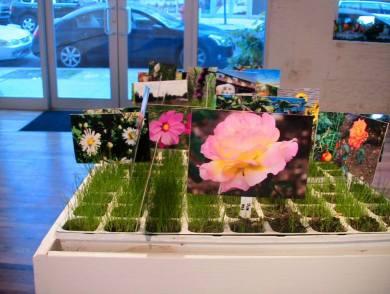 """In the Garden of One World: visual-art installation"" at La MaMa La Galleria May-July 2008"
