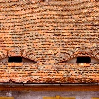 """Eyes of Transylvania"" (Sibiu, Romana, 2006)"